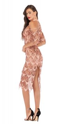 Bewitching fringe Dress